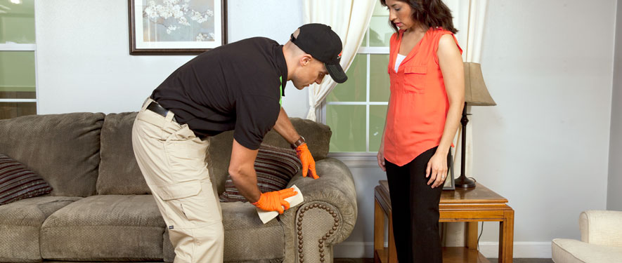 Uniontown, PA carpet upholstery cleaning